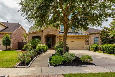 Sugar Land Single Family Home For Sale: 6518 Percy Street