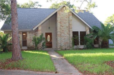 Houston Single Family Home For Sale: 10307 Sageglow Drive