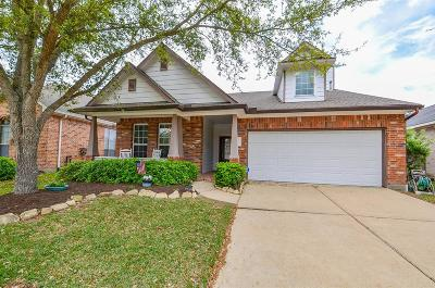 Katy Single Family Home For Sale: 4435 Wellington Grove Lane