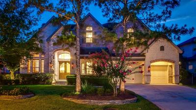 The Woodlands Single Family Home For Sale: 46 N Seasons Trace