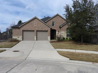 Conroe Single Family Home For Sale: 8207 Peppervine Court