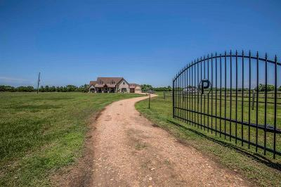 Austin County Country Home/Acreage For Sale: 10586 Lourdes Road