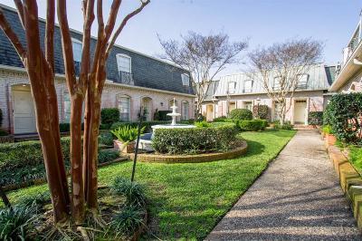 Houston Condo/Townhouse For Sale: 2720 Briarhurst Drive #3