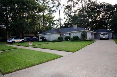 Rental For Rent: 14919 Spring Lake Drive
