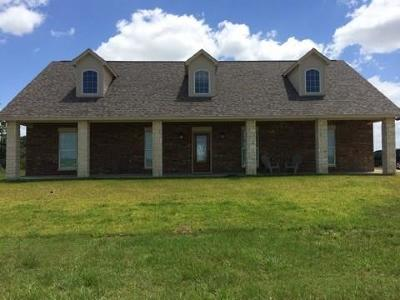 Sealy Single Family Home For Sale: 8922 Kulow Road