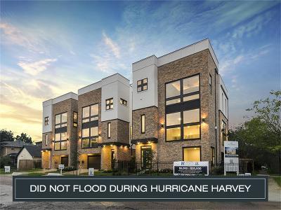 Houston Single Family Home For Sale: 2029 Vermont Street