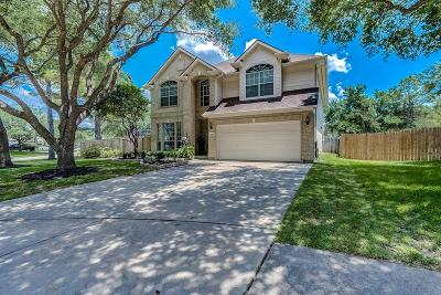 Cinco Ranch Single Family Home For Sale: 1603 S Warmstone Court