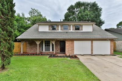 Houston Single Family Home For Sale: 9603 Railton Street