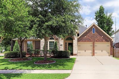 Houston Single Family Home For Sale: 16326 Open Sea Drive