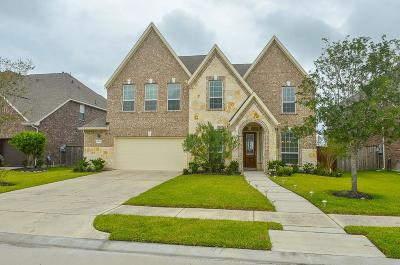 Pearland Rental For Rent: 8407 Rocky Bend Lane