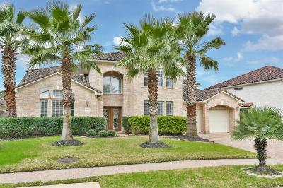 Houston Single Family Home For Sale: 18410 Windsor Lakes Drive
