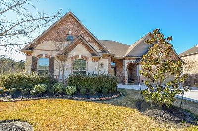 Houston Single Family Home For Sale: 15818 Tremout Hollow Lane