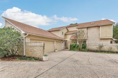 Houston Single Family Home For Sale: 1002 Glacier Hill Drive