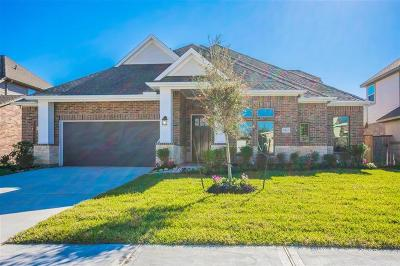 Tomball Single Family Home For Sale: 13423 Alpine Mountain Lane