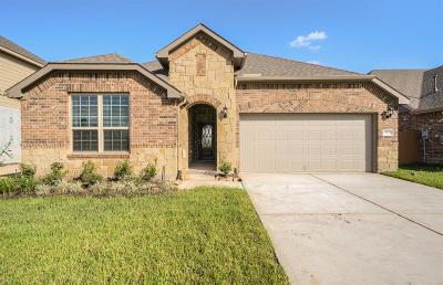 Conroe, Houston, Montgomery, Pearland, Spring, The Woodlands, Willis Single Family Home For Sale: 27977 Clear Pines Drive