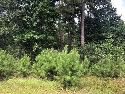 Magnolia Residential Lots & Land For Sale: 29213 Village Creek