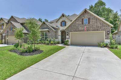New Caney Single Family Home For Sale: 23434 Fauburg Drive