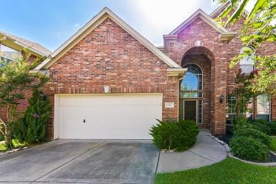 Fort Bend County Single Family Home For Sale: 6123 Lakenshire Falls Lane