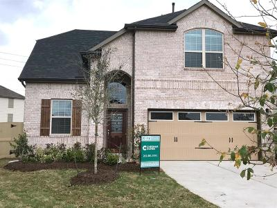 Houston Single Family Home For Sale: 1502 Summer City Drive