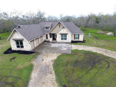 Sweeny Single Family Home For Sale: 20102 County Road 684b