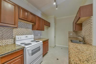 Galveston County, Harris County Condo/Townhouse For Sale: 6000 Reims Road #2907