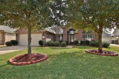 Houston Single Family Home For Sale: 17927 Adobe Trace Lane