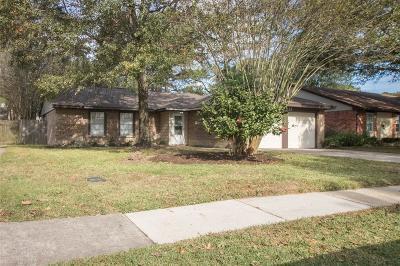 Spring Single Family Home For Sale: 21123 N Tangle Creek Lane