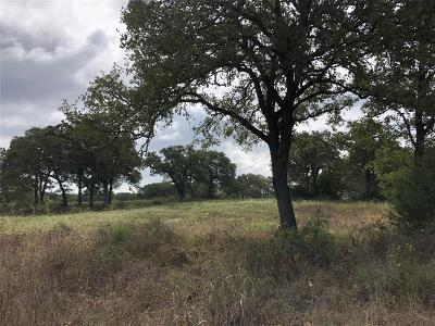 Lee County Country Home/Acreage For Sale: County Road 130