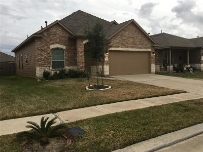 Katy Single Family Home For Sale: 20443 Purple Sunset Court