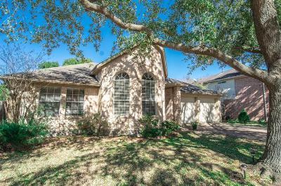 Houston Single Family Home For Sale: 15906 Mission Glen Drive