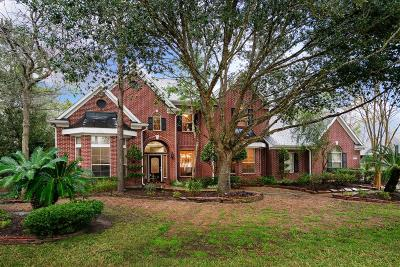 Friendswood Single Family Home For Sale: 305 Scenic View