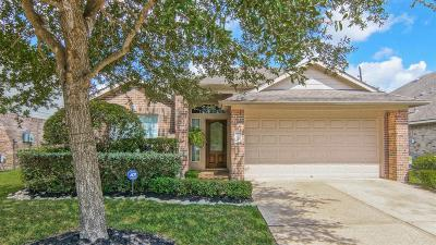 Pearland Single Family Home For Sale: 2008 Roaring Springs Drive