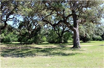 Columbus TX Residential Lots & Land For Sale: $149,000