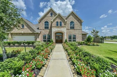 Rosharon Single Family Home For Sale: 2719 Silver Falls Lane