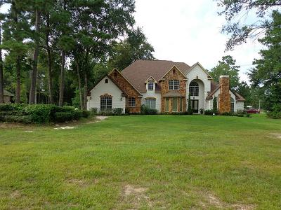 Huffman Single Family Home For Sale: 827 Commons Lakeview Drive