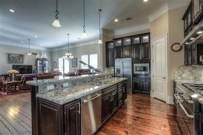 Houston Single Family Home For Sale: 1306 Hawthorne Street