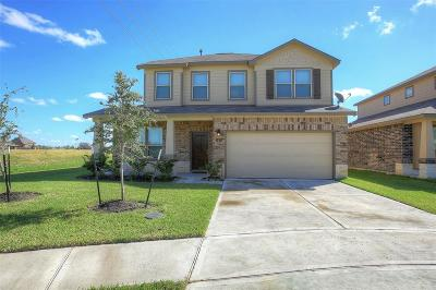 Manvel Single Family Home For Sale: 1 Eagle Lake Court