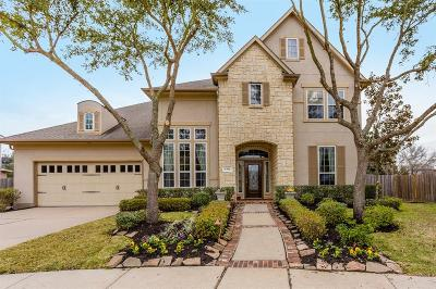 Sugar Land Single Family Home For Sale: 1302 Alleyan Trail
