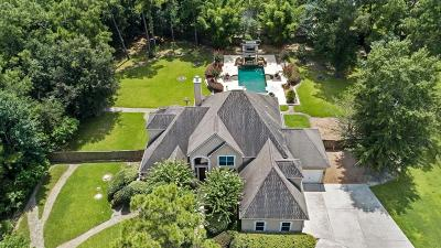 Spring Single Family Home For Sale: 3902 Rayford Road