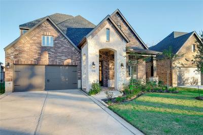 Sugar Land Single Family Home For Sale: 5239 Pickford Grove
