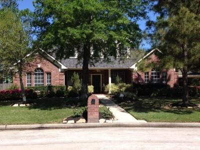 Houston Single Family Home For Sale: 14326 Chartley Falls Drive