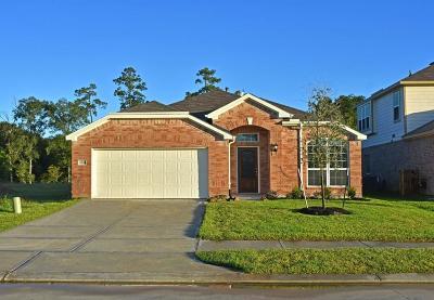 Conroe Single Family Home For Sale: 2545 Wood Park Boulevard