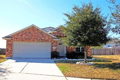 Tomball, Tomball North Rental For Rent: 20007 Mammoth Falls Drive