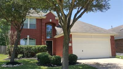 Houston Single Family Home For Sale: 9647 Tall Meadow Lane