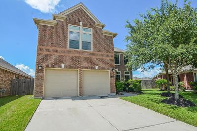 Pearland Single Family Home For Sale: 2804 Arbor Brook Lane