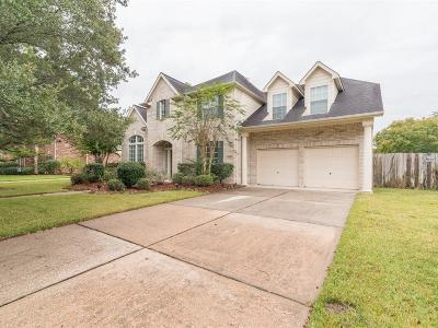 Houston Single Family Home For Sale: 4710 North Pine Brook Way
