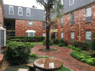 Galveston County Rental For Rent: 217 Church Street #211