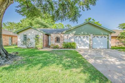 Houston Single Family Home For Sale: 16326 Summer Wind Drive