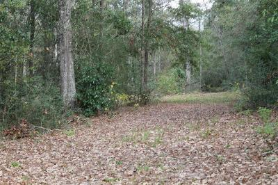 Conroe Residential Lots & Land For Sale: 17135 Peach Creek