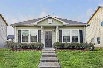 Katy Single Family Home For Sale: 20718 Settlers Lake Circle